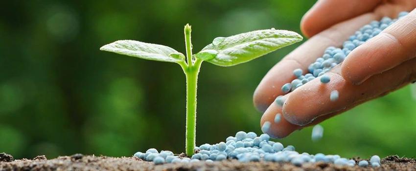 Resultado de imagem para Brasil importou 24,96 milhões de toneladas de fertilizantes