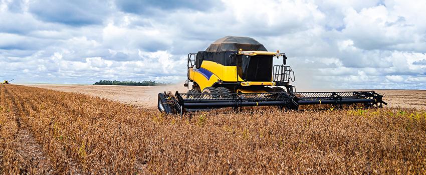 PIB do agronegócio cresce 4,26% de janeiro a maio de 2020