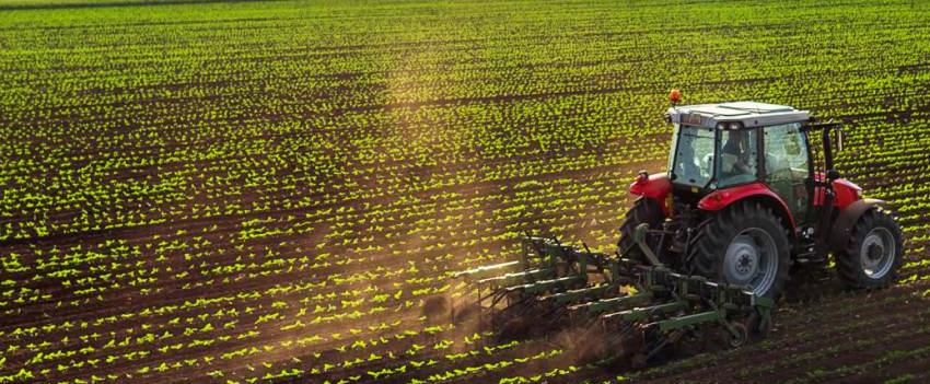 FAESC analisa os impactos da pandemia no agronegócio